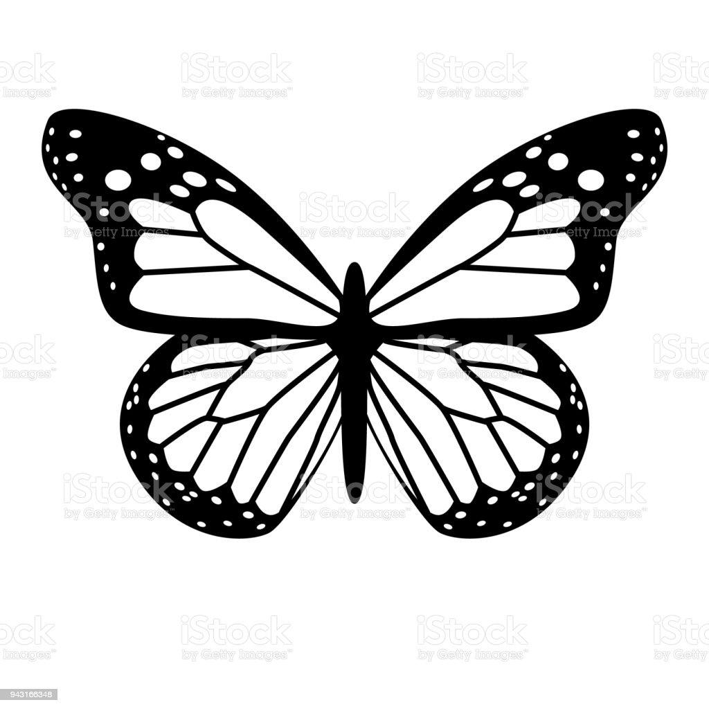 papillon noir et blanc de vecteur vecteurs libres de droits et plus d images vectorielles de aile d animal istock