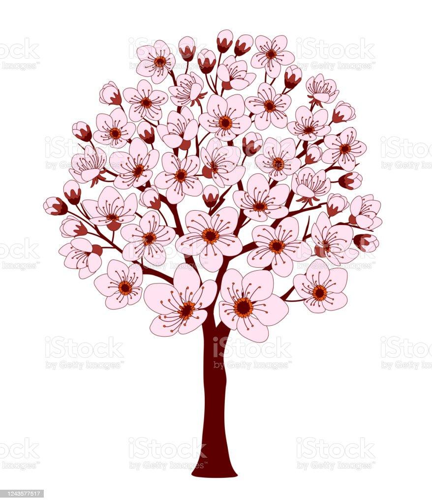 Petit Cerisier Colore De Dessin Anime Avec La Fleur Rose Vecteurs Libres De Droits Et Plus D Images Vectorielles De Apprentissage Istock