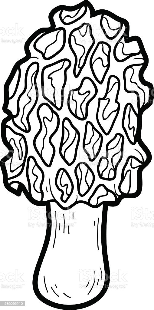 Coloring book edible mushrooms morel stock illustration, i love you coloring page