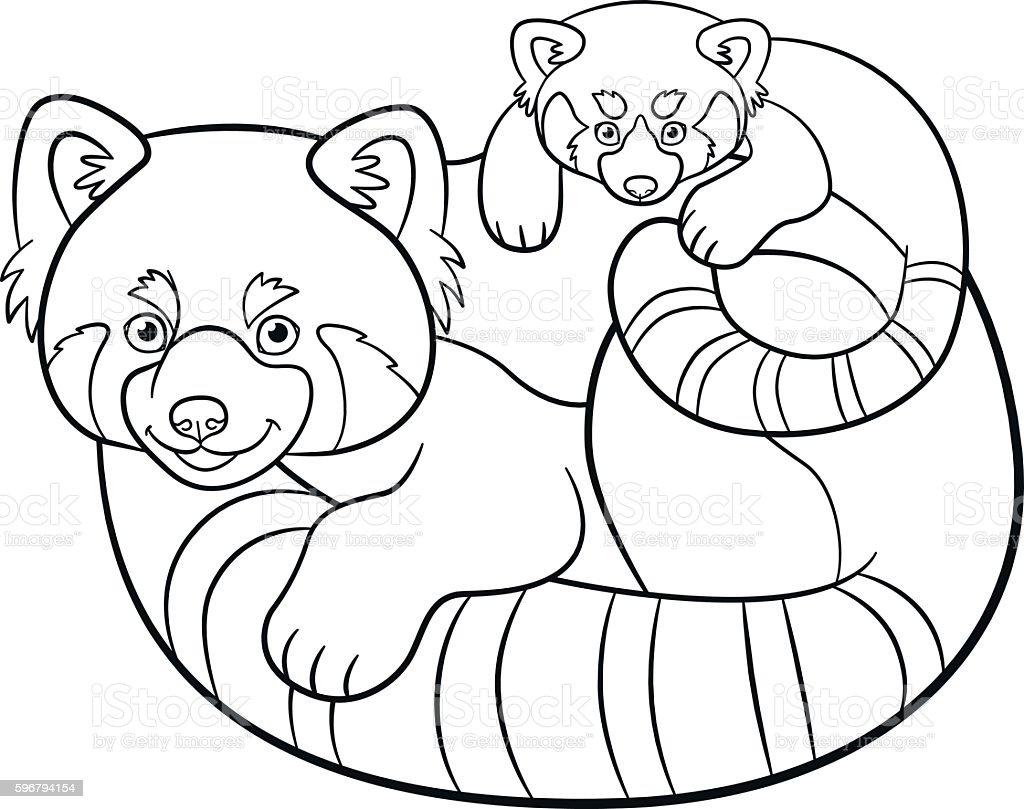 Coloring Pages Mother Red Panda With Her Baby Stock Vector Art