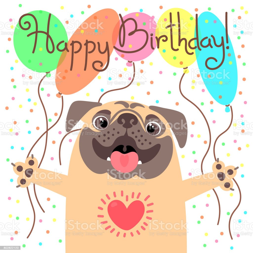Cute Happy Birthday Card With Funny Puppy Loving Pug And Balloons Stock Illustration Download Image Now Istock