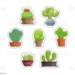 Cute Succulent Or Cactus Plant Set Stock Illustration Download Image Now Istock