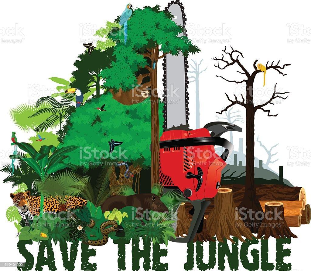 Rainforest Destruction Clip Art Cliparts