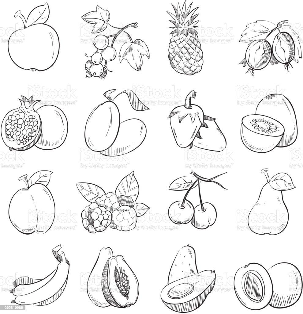 Imagen Para Dibujar Frutas Frutas Dibujo Para Colorear E