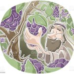 Parable Of The Vine And Branches Stock Illustration Download Image Now Istock