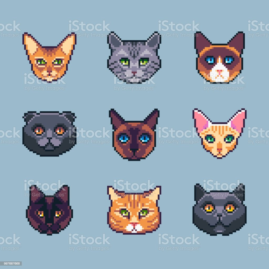 Pixel Art Chat Races Icones Vector Set Vecteurs Libres De Droits Et Plus D Images Vectorielles De Animaux De Compagnie Istock