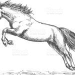 Race Horse Jumping High Stock Illustration Download Image Now Istock