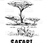 Sketch Of The African Savanna With Plants And Trees Hand Drawn Illustrtion Converted To Vector Stock Illustration Download Image Now Istock
