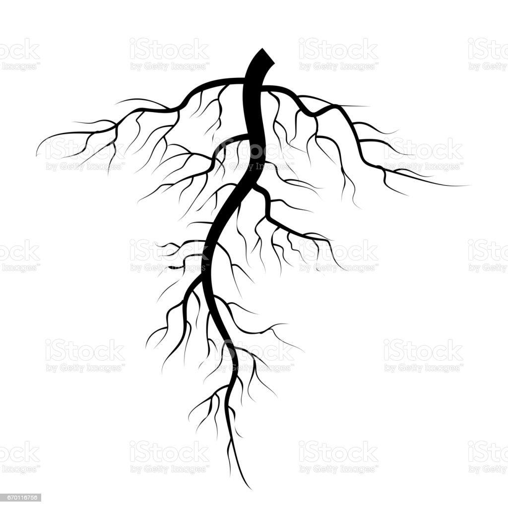 Free Art Roots Clip Dirt