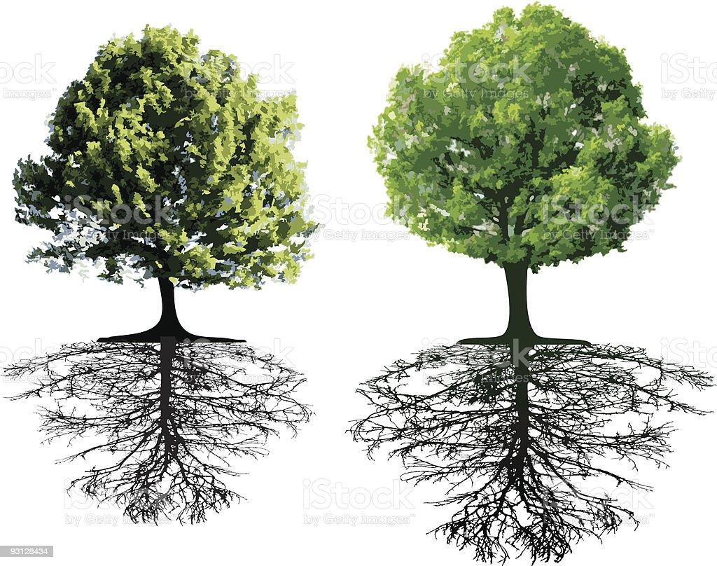 Clip Free Dirt Roots Art