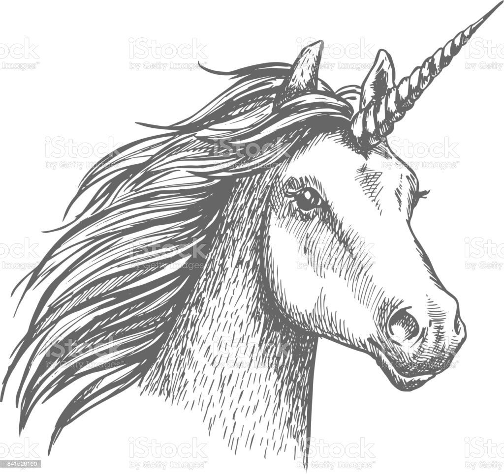 Royalty Free Unicorn Head Clip Art Vector Images