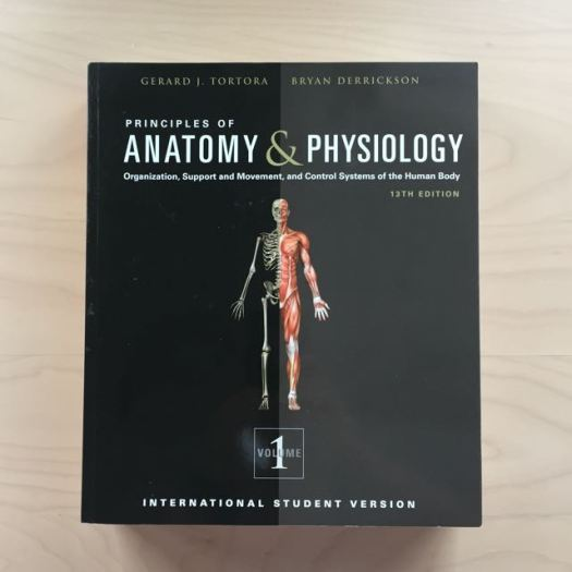 Nett Anatomy And Physiology Pdf Tortora Bilder - Anatomie und ...