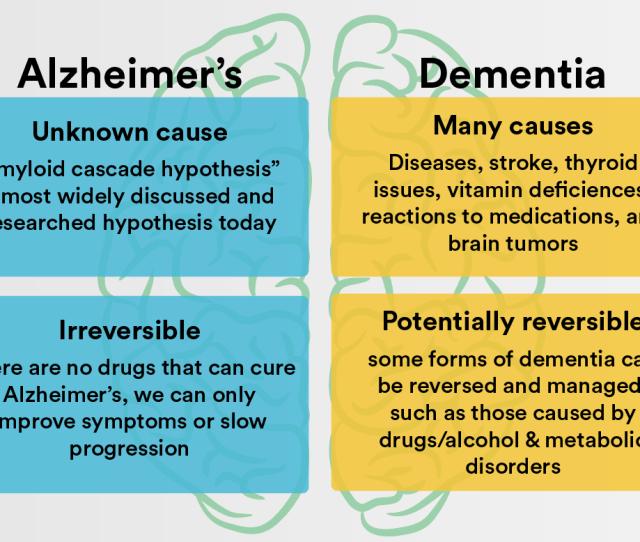 Causes Of Alzheimers Vs Dementia Alzheimers Disease
