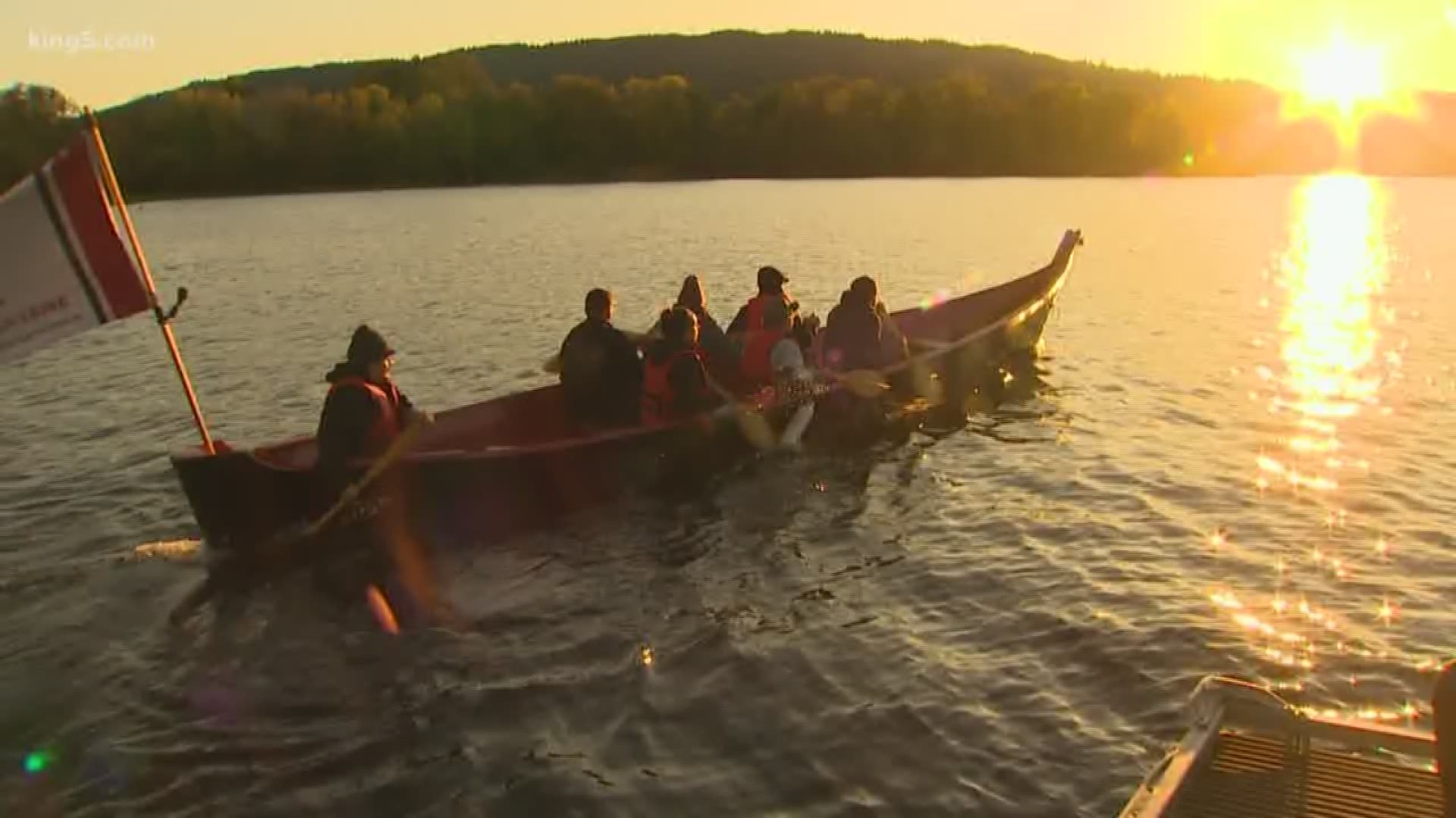 Kokanee Salmon Released In Lake Sammamish For The First