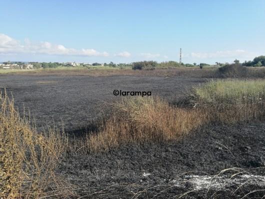 terra campagna incendio