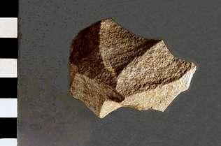 Un archivo de decenas de miles de años en Cova Eirós