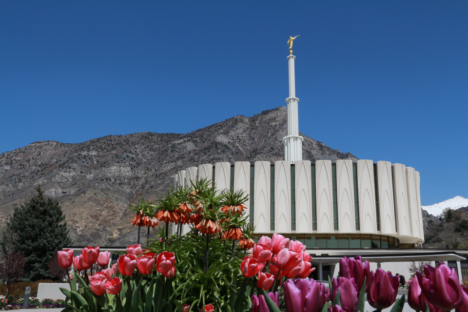 Provo Utah Temple. Courtesy LDS Media Library.