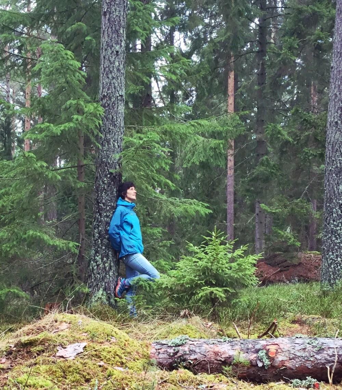 taenker i skogen