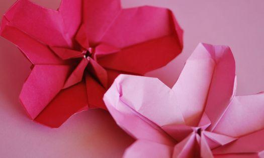 vika körsbärsblomma i papper