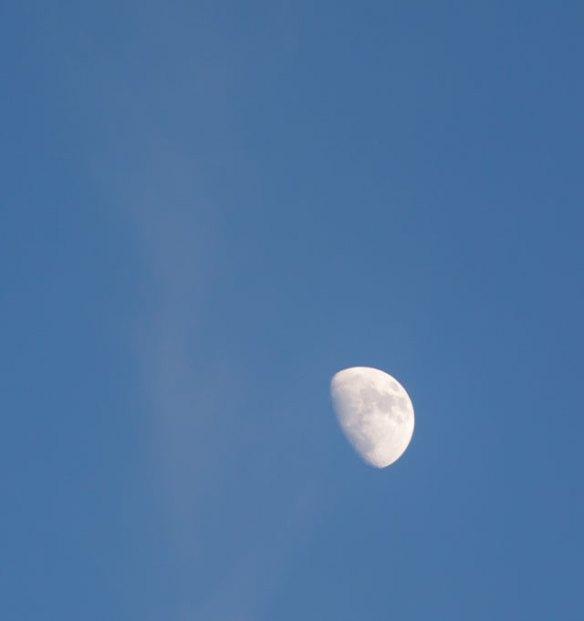 månen i sexdrega