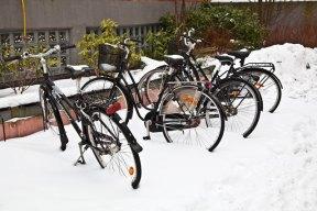 Cyklar snö