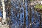 reflektion änggårdsbergen