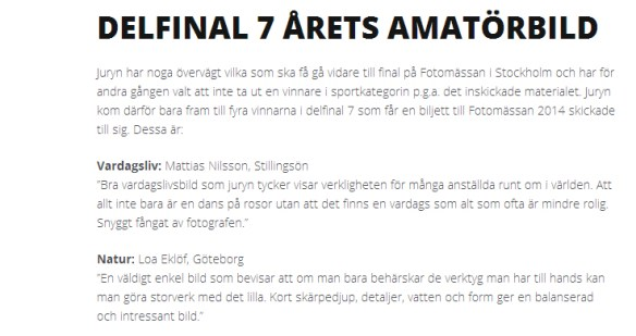 aretsbild-delfinal7