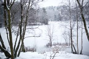 vinterIMG_5793