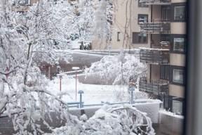 snö-vegagatan-nordostpassagen