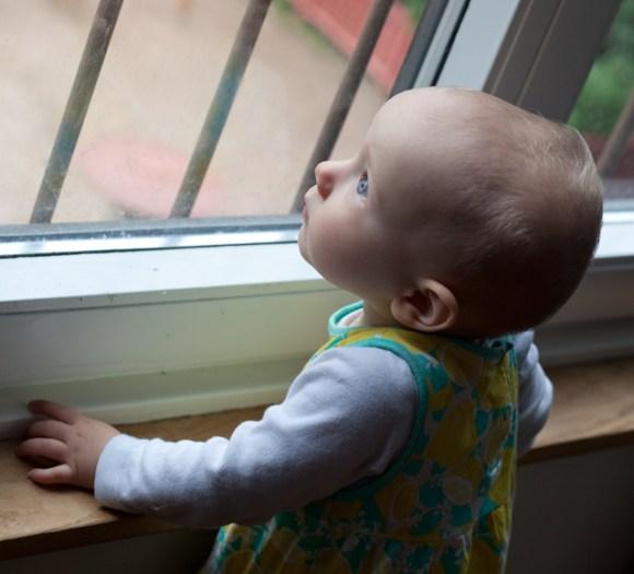 li-tittar-i-fönster