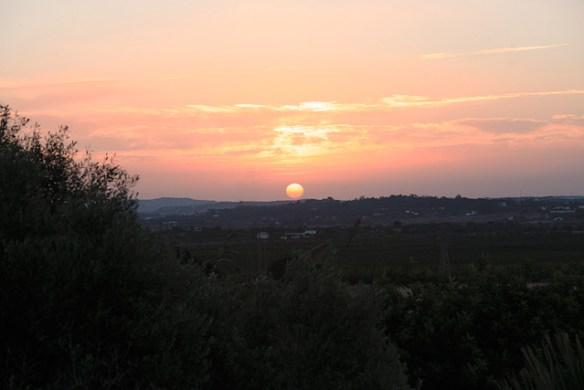 solnedgång-rosa