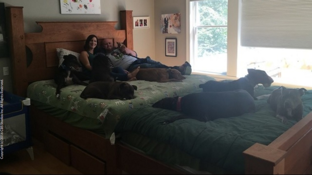 Couple Built 14 Foot Long Bed So They Could Sleep