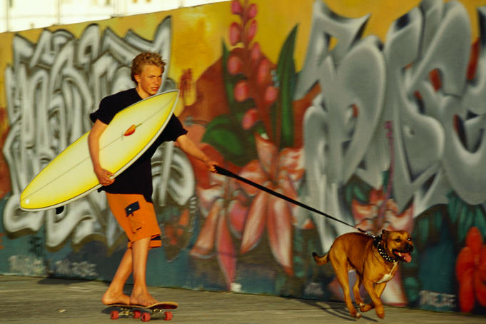 Boy with surfboard riding skateboard while being towed by dog.