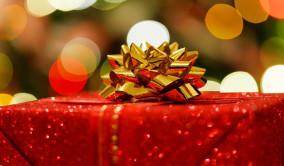 Minox BL 8x44 HD - bästa julklappen