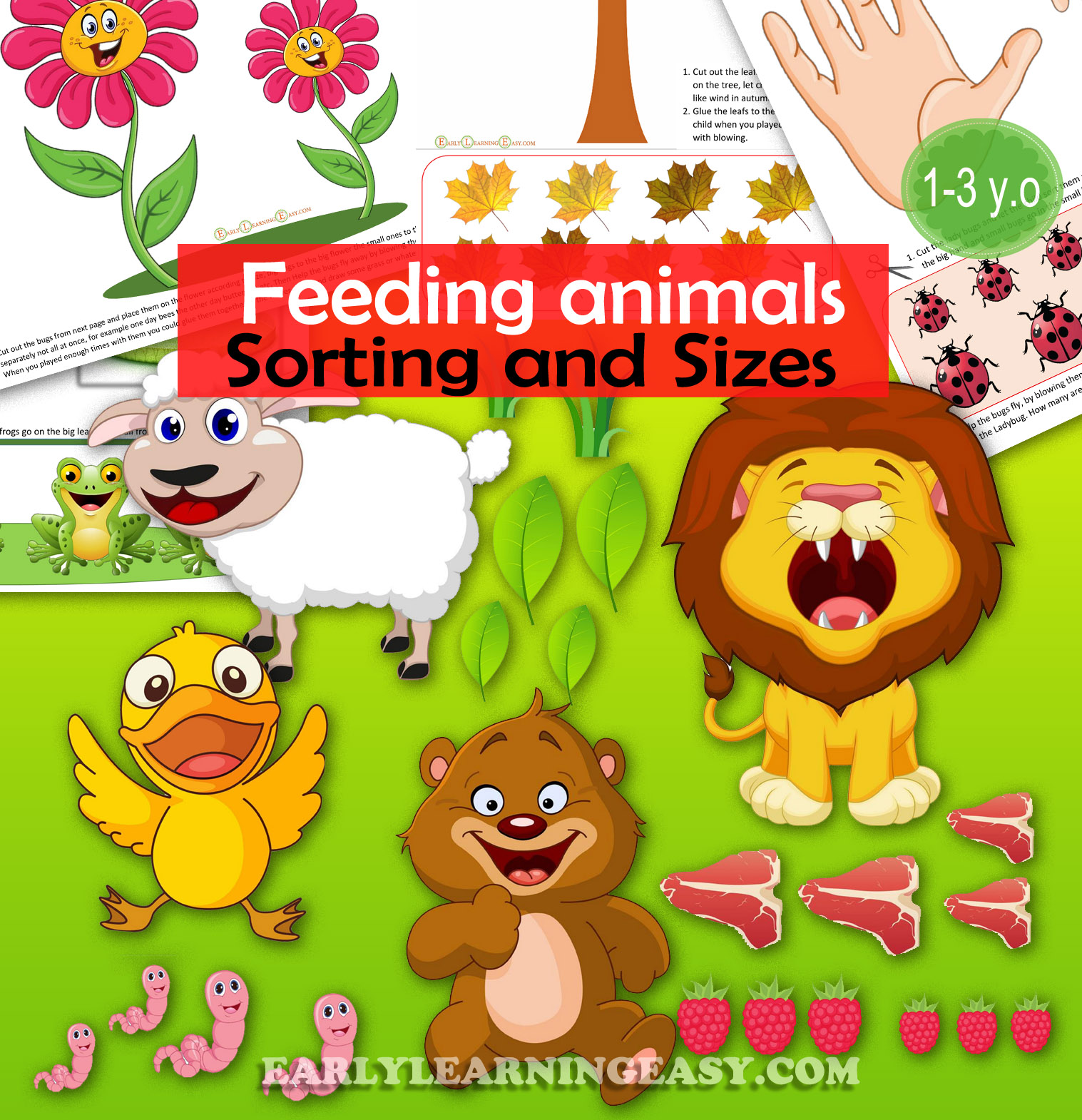 Feed The Animals Size And Sorting
