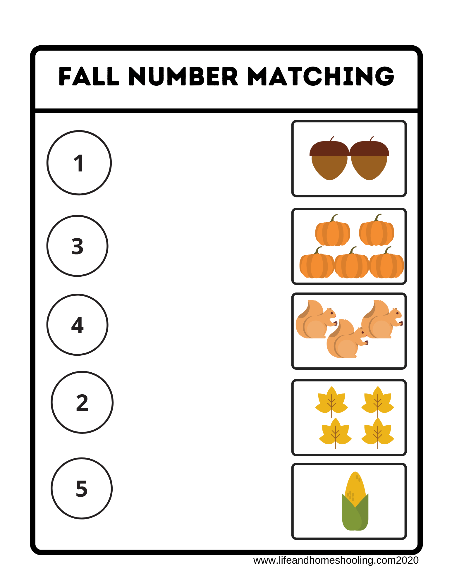 Fall Numbers Matching