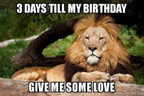 3 Days Till My Birthday Give Me Some Love Contemplative Lion Make A Meme