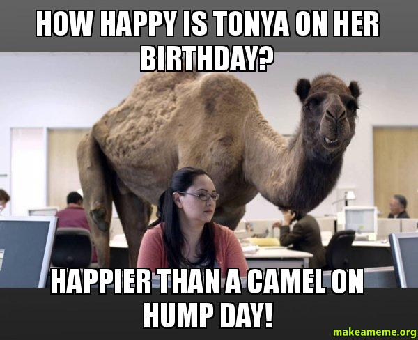 How Happy Is Tonya On Her Birthday Happier Than A Camel On Hump Day Make A Meme