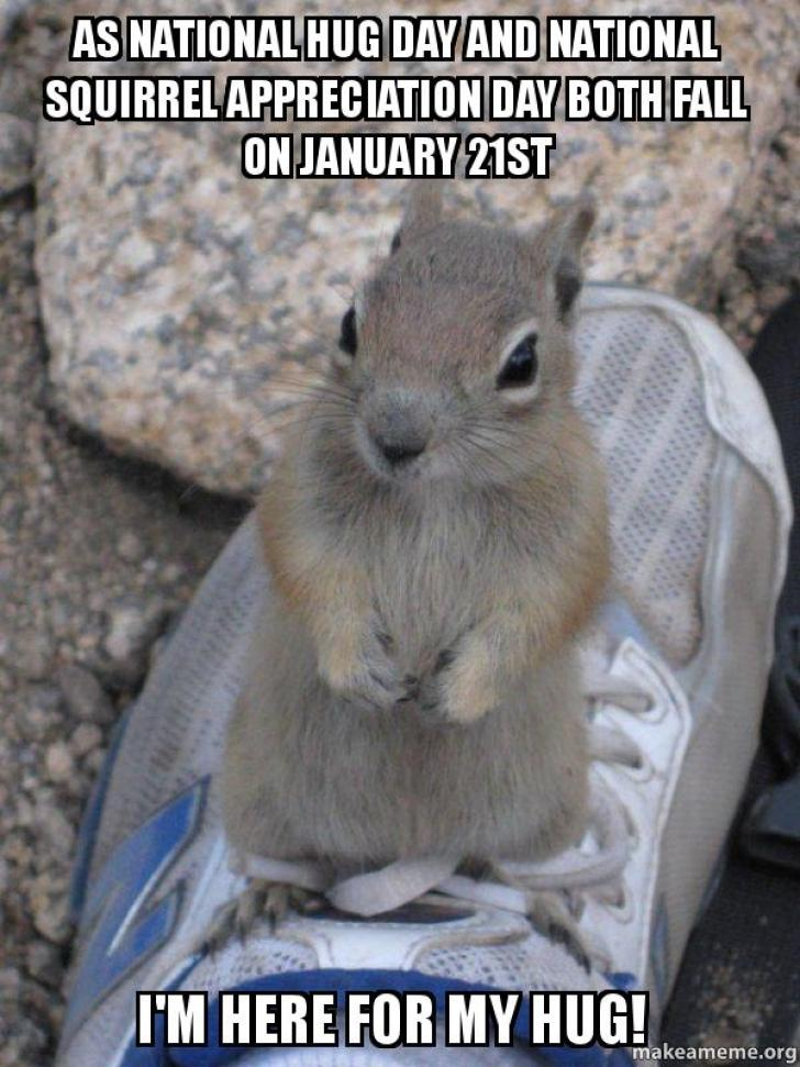 As National Hug Day and National Squirrel Appreciation Day both fall on  January 21st I'm here for my hug! - Standover Squirrel | Make a Meme