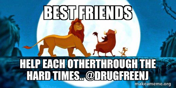 24 Funny Animal Memes To Help You Procrastinate Funny Animal