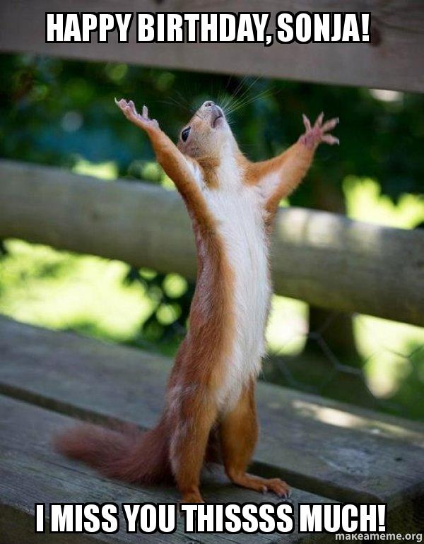Happy Birthday Sonja I Miss You Thissss Much Happy Squirrel Make A Meme