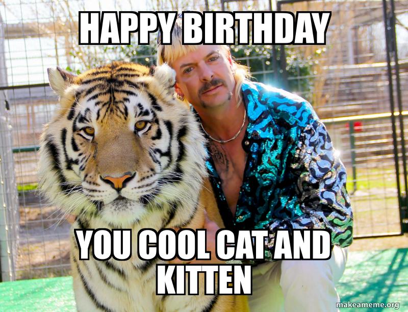 Funny Happy Birthday Cat Meme Happy Birthday Cat Cat Birthday
