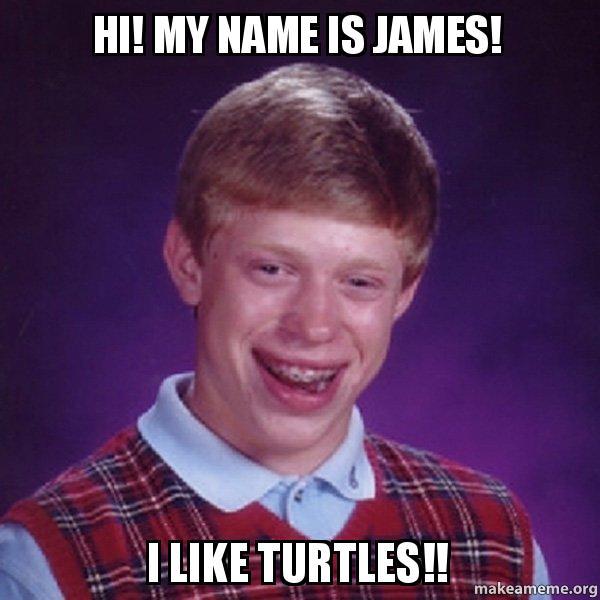 Hi My Name Is James I Like Turtles Bad Luck Brian Make A Meme