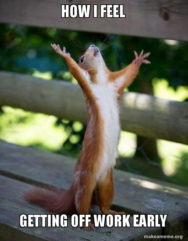 How I Feel Getting Off Work Early Happy Squirrel Make A Meme