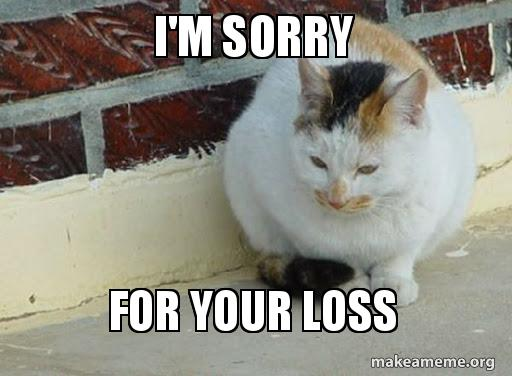 Sorry For Your Loss Meme Foxydoor Com In 2020 With Images