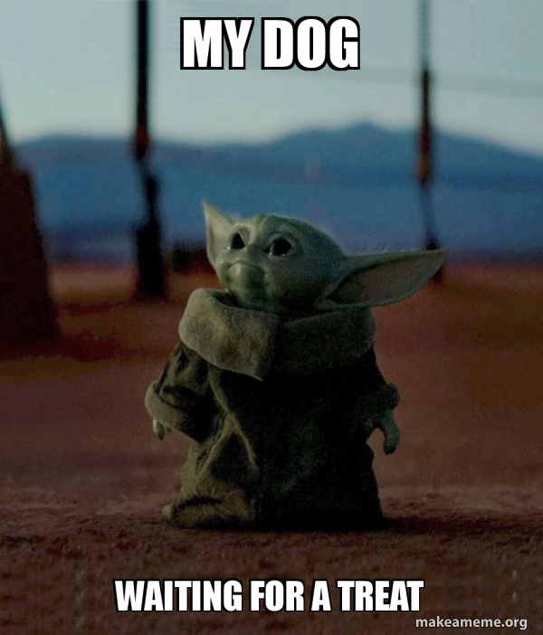 Dogs Are Life R Babyyoda Baby Yoda Know Your Meme