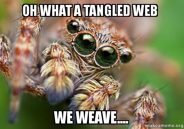 Oh What A Tangled Web We Weave Hipster Spider Make A Meme