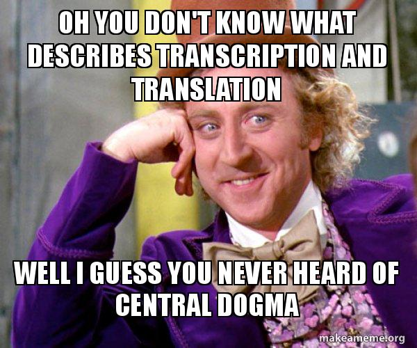 Central Dogma Dogeeeee Meme Generator