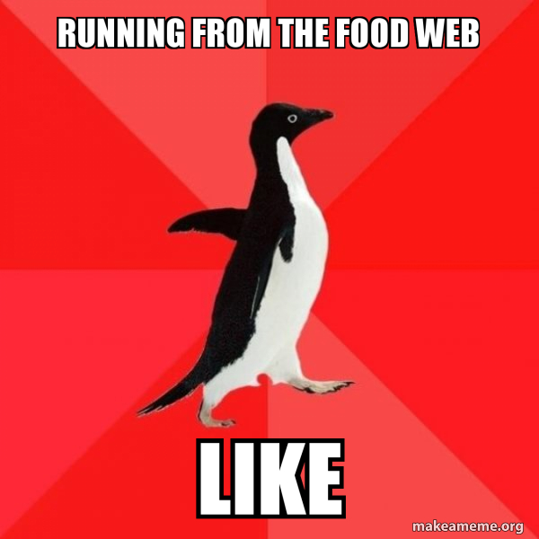 Running From The Food Web Like Socially Awesome Penguin Make A