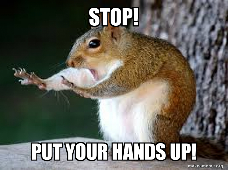 25 Best Memes About Dramatic Chipmunk Download Dramatic